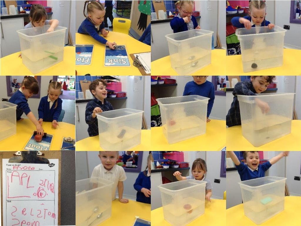 floating and sinking activity collage